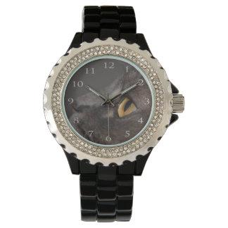 Relógio Olho-Macro do gato por Shirley Taylor
