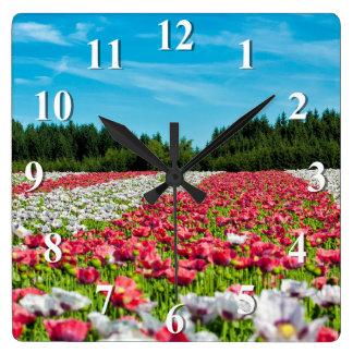 Relógio Quadrado Campo de flores das papoilas