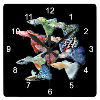 Relógio Quadrado Guppies