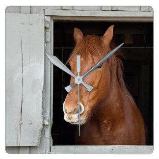 Relógio Quadrado O cavalo de um quarto da castanha que espera para