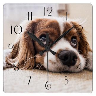 Relógio Quadrado Spaniel de rei Charles descuidado