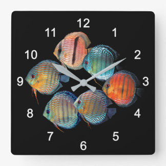 Relógio Quadrado Wild Discus fish