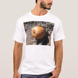remendo da abóbora camiseta