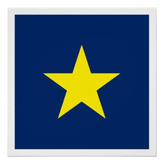 República de Texas Póster