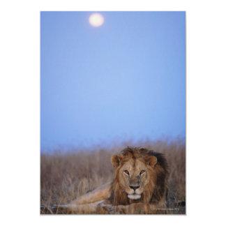 Reserva nacional de Mara do Masai Convite 12.7 X 17.78cm