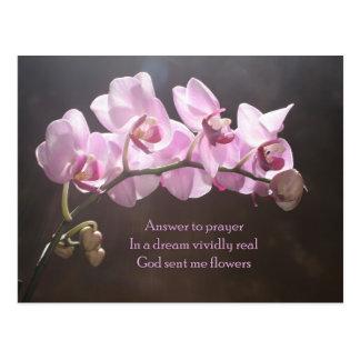 Resposta à oração cartão postal