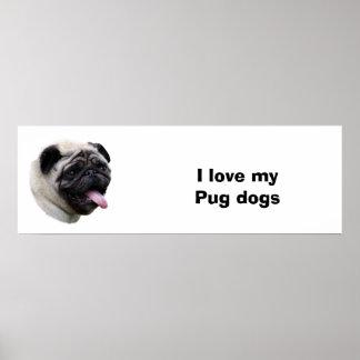 Retrato da foto do cão do Pug Posters