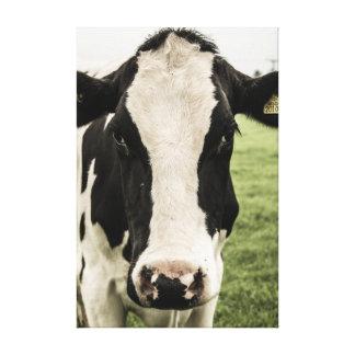 Retrato da vaca