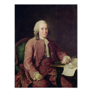 Retrato de Carl von Linnaeus Pôsteres