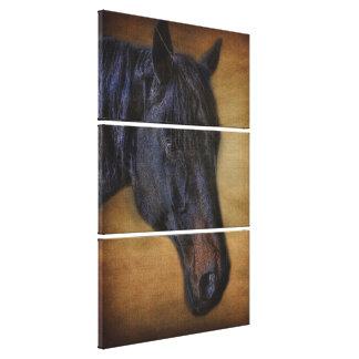 Retrato preto do cavalo no efeito rústico do impressão em tela