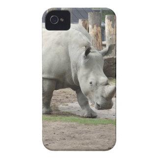 Rhinos brancos do norte pstos em perigo capinhas iPhone 4