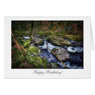 Rio da floresta - feliz aniversario cartão