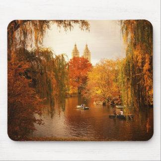 Romance do outono do Central Park Mousepads