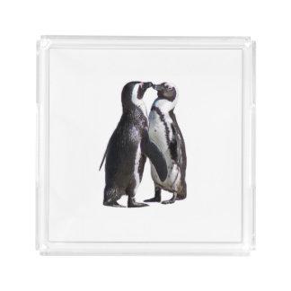 Romance do pinguim