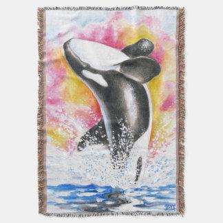 Rompimento da orca manta