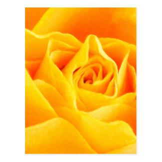 Rosa amarelo pintado cartão postal