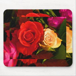 Rosa amarelo vermelho mouse pads