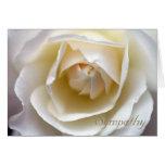 Rosa branco - cartão de simpatia