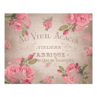 Rosa de rosas shabbychic francês do vintage floral flyer 11.43 x 14.22cm