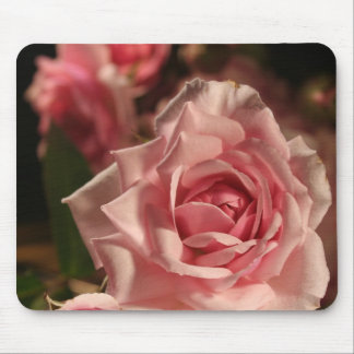 Rosa do rosa mouse pad