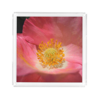 Rosa empoeirado papoila colorida bandeja de acrílico