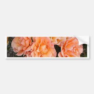Rosas alaranjados pálidos na flor no jardim adesivo para carro
