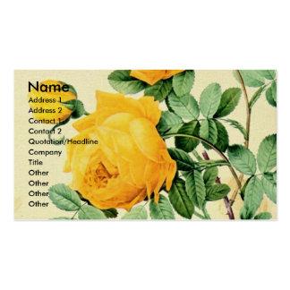 Rosas amarelos do vintage cartões de visitas