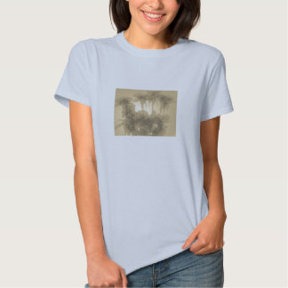 Rosas desvanecidos camisetas
