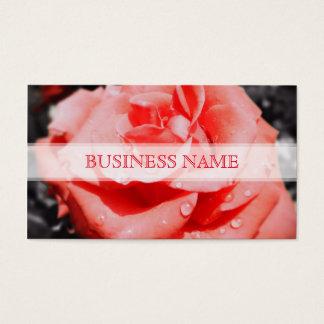 Rosas do vintage cartão de visitas