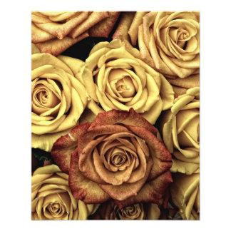 Rosas do vintage flyer 11.43 x 14.22cm