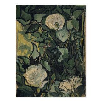 Rosas por Vincent van Gogh Cartao Postal
