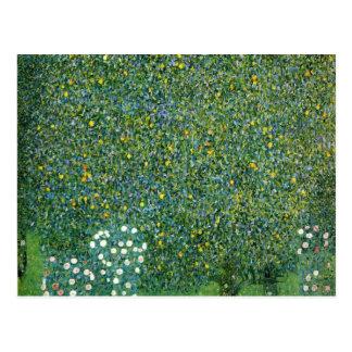 Rosas sob as árvores bonitos cartão postal