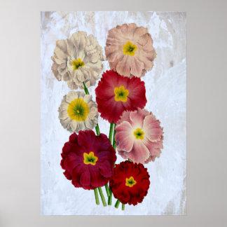 Rústico floral das flores botânicas do vintage no poster