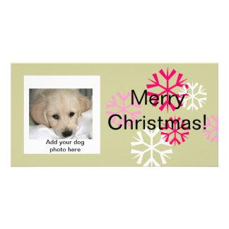 Sábio cor-de-rosa dos cartões de foto de Natal Cartão Com Foto