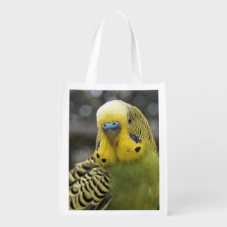 Sacola Ecológica Pássaro de Budgie