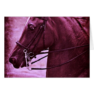 Saddlebred matizado cartao