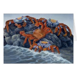 Sally Lightfoot Crabs o cartão