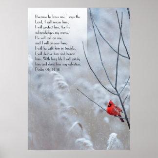 Salmo 91, poster cristão com um pássaro vermelho