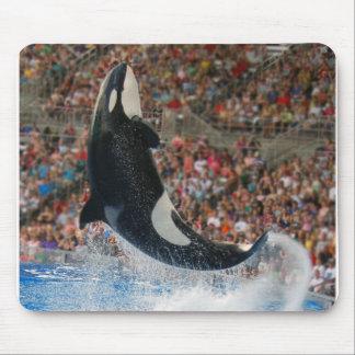 Salto da baleia de assassino mousepad