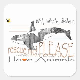 Salva-me a baleia