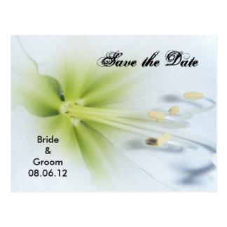 Salvar o cartão do casamento da data cartao postal