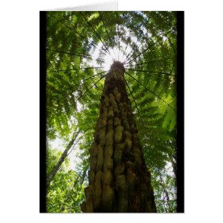 Samambaia de árvore cartão comemorativo