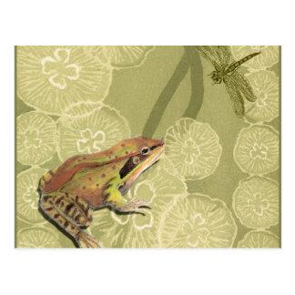 Sapo e libélula em lírios de água cartão postal