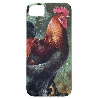 SE do iPhone + iPhone 5/5S, mal lá - galo Capa Para iPhone 5