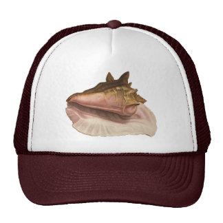 Seashell de Shell do Conch da rainha do vintage, Boné
