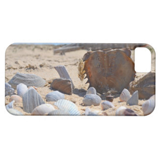 Seashells na praia por Shirley Taylor Capa Barely There Para iPhone 5