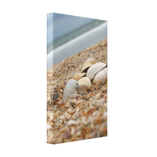 Seashells no impressão das canvas da fotografia da impressão em tela canvas