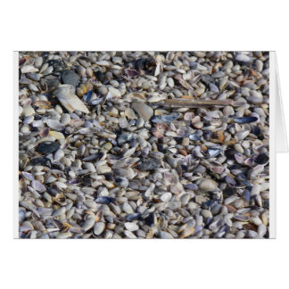 Seashells pelo litoral Notecard Cartão De Nota