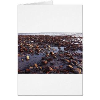 Seixos na praia cartão