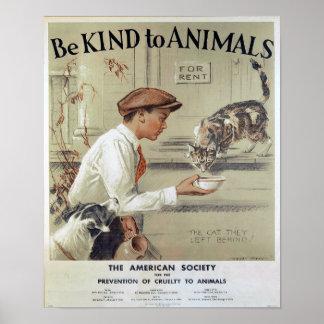 Seja amável aos Animal-Gatos Impressão